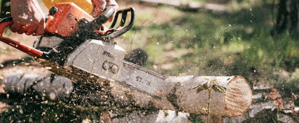 PEFC Mežsaimniecības darbuzņēmēju sertifikācija
