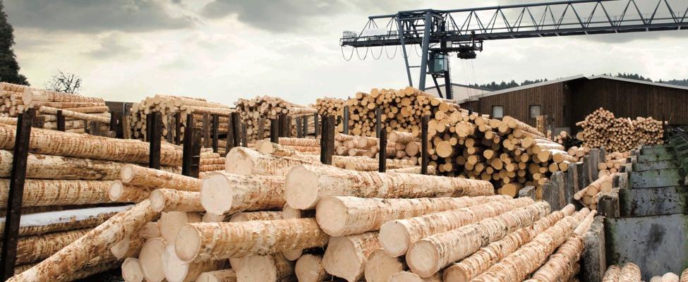 EUTR Eiropas Savienības Kokmateriālu regula