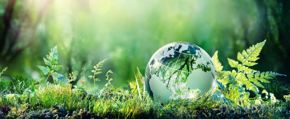 ISCC Ilgtspējas un oglekļa emisiju sertifikācija